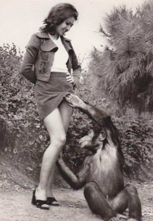 Судя по лицу девушки ей это нравится не меньше обезьяны