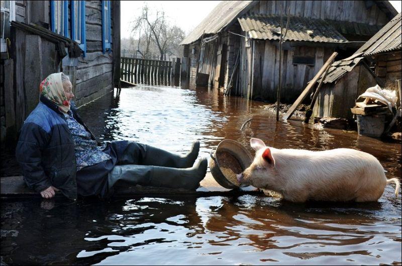 belorussia_flood_01
