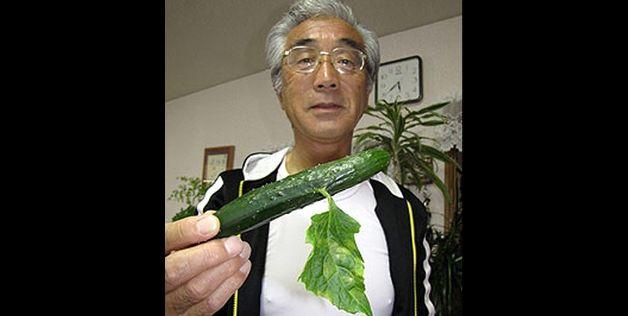 Богатый урожай фруктов и овощей из-под Фукусимы