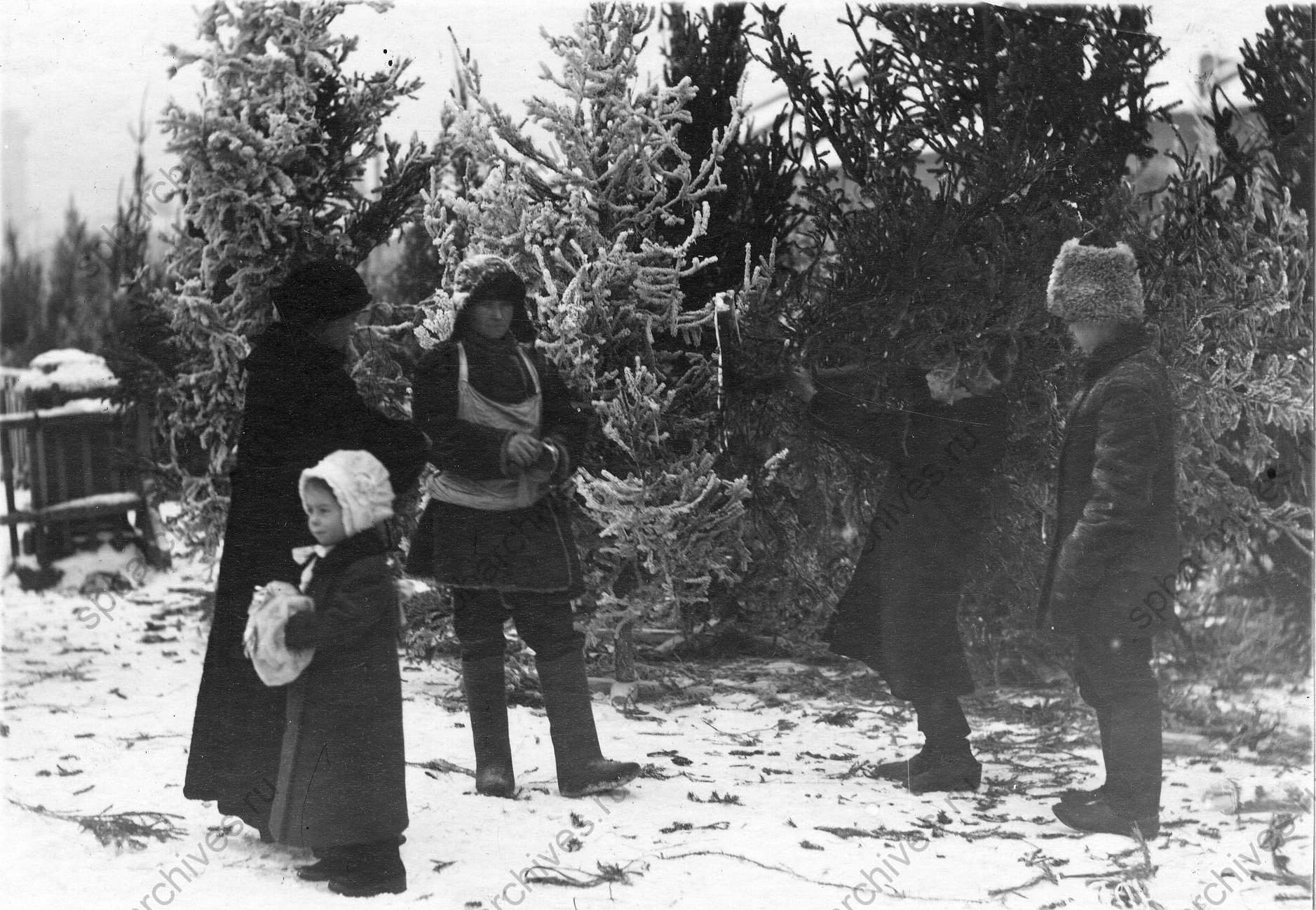 1913. Елочный базар