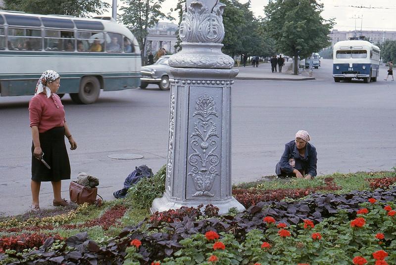 1965 Gardeners Minsk.jpg