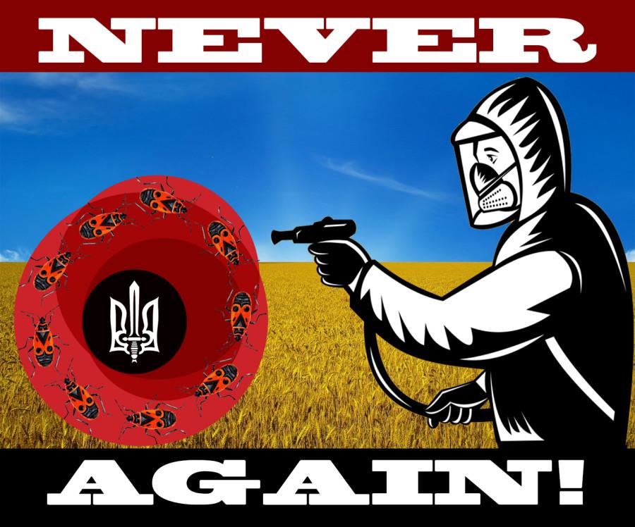 ответ евроукраинской  альтернативной символике Дня Победы. - копия