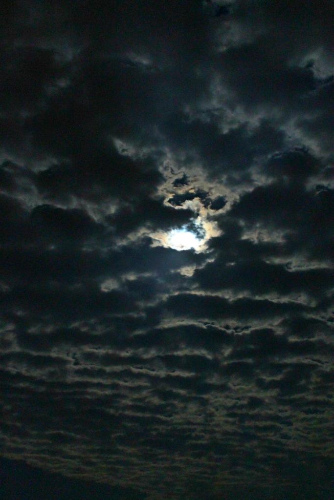 Ночь над Украиной 1