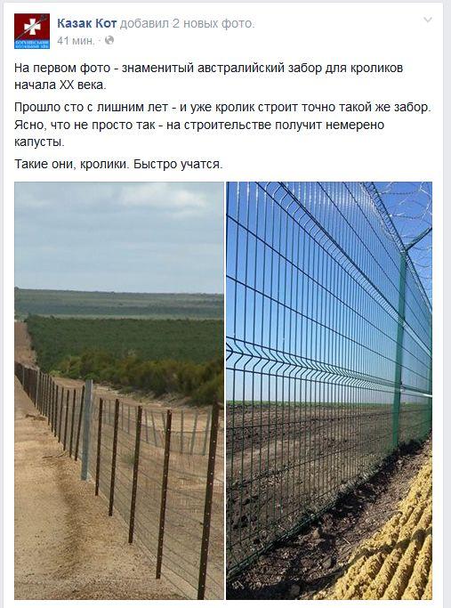 Забор для кроиков