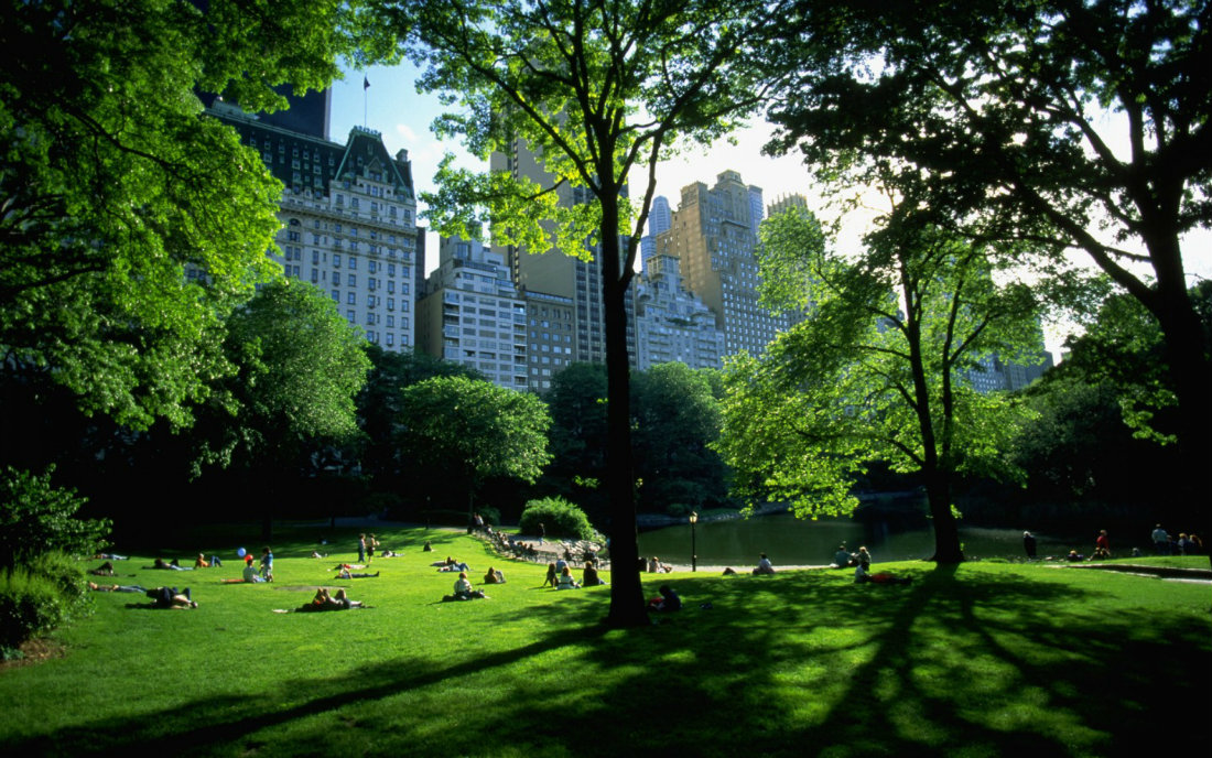 central-park-view-1440-900-5279