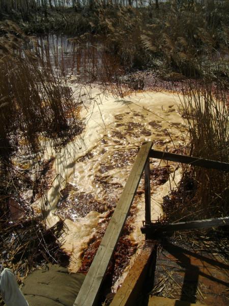 Мёртвая река 18