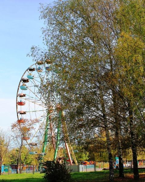 Добровольцы хотят провести съезд в парке города Владимира