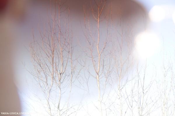 Фото 28 апреля часть 2_108_фото.jpg