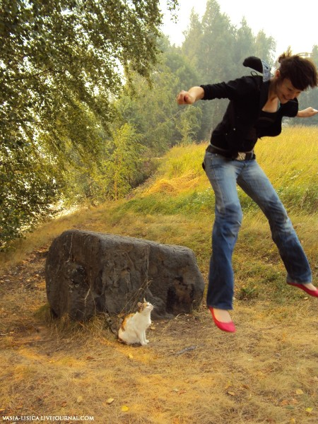 кошка с юршинского острова