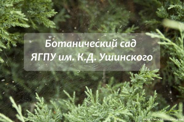 БОТАНИЧЕСКИЙ САД ЯГПУ ИМ. К.Д. УШИНСКОГО