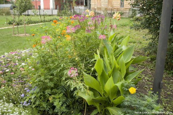Ботанический сад в Ярославле
