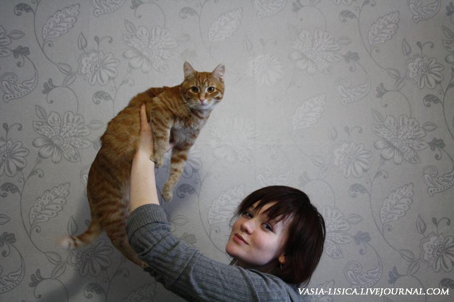 девушка и рыжий кот