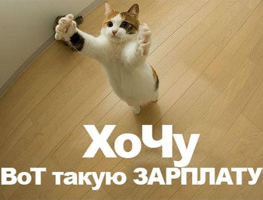 https://www.mordovmedia.ru/media/news/30/46730/2d439ba3978330bb11ff6f4419434a07.jpg