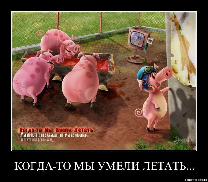 http://ic.pics.livejournal.com/vasilii_ch/18102572/26136/26136_original.jpg
