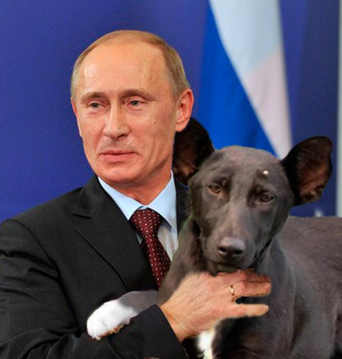 Как путину подарили собаку