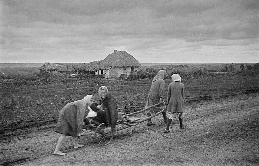Освобождение Белгорода - август 1943 года -16