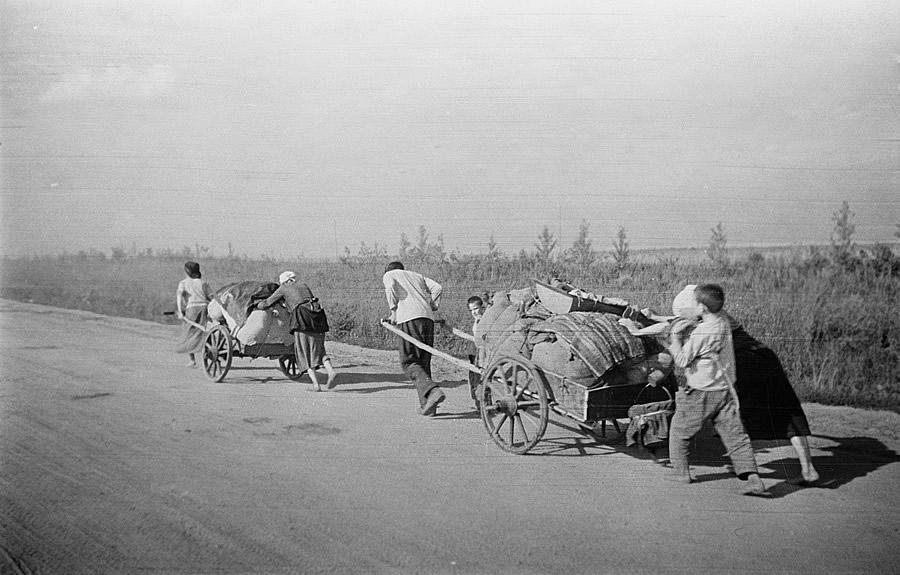 Освобождение Белгорода - август 1943 года -17