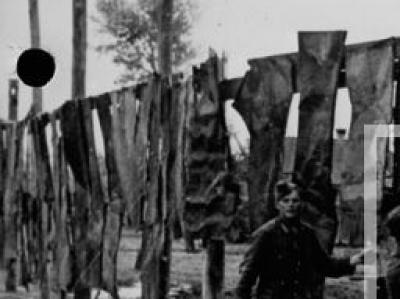 Маскировочный забор. Донец. Июнь 1943