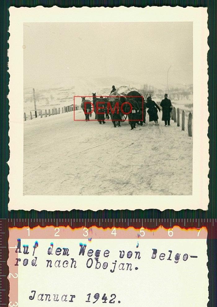 Auf dem wege von Belgorod nach Obojan. Januar 1942. Белгород-Обоянь