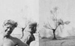 Erhängte sowjetische Partisanin + EGefangen genommener sowjetischer Partisan vor der Hinrichtung : Sowjetunion um 1943