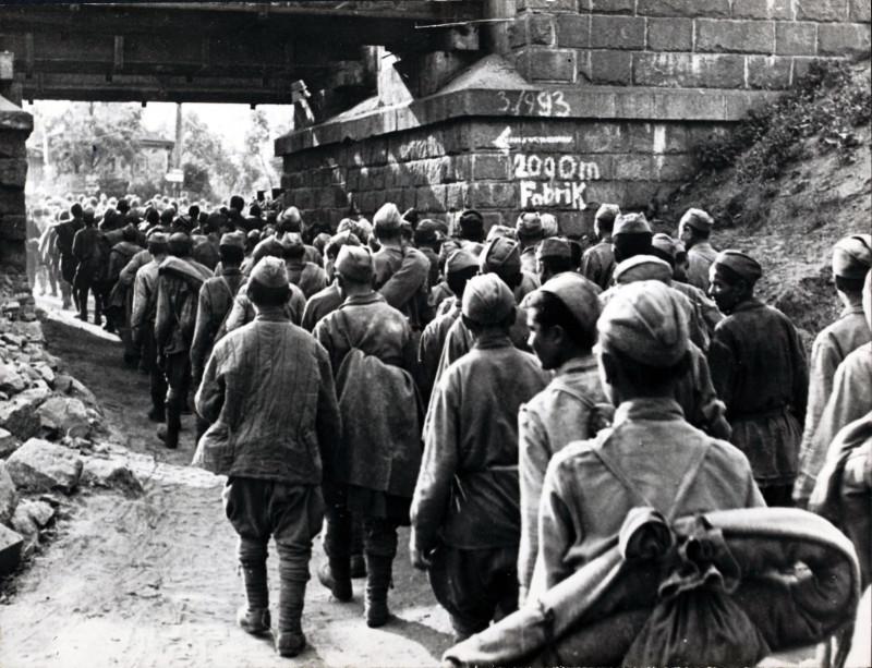 Весёлая Лопань в начале июля 1943 года