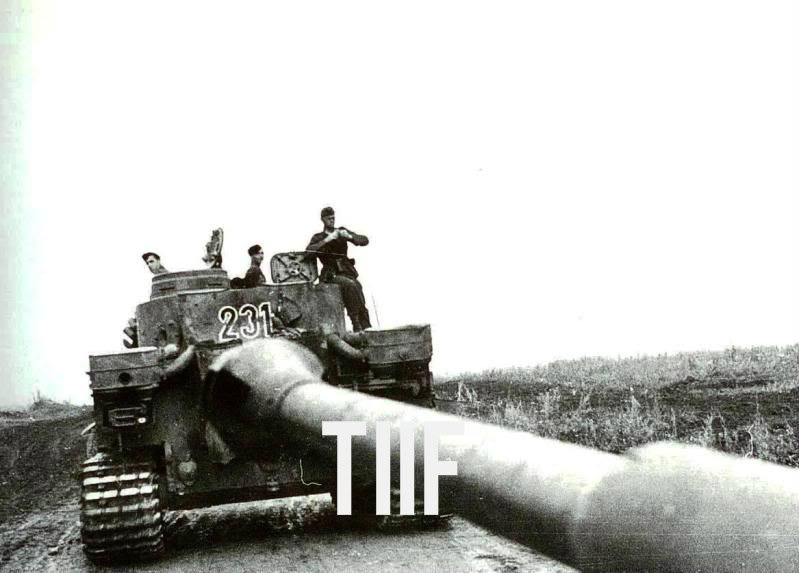 Tiger 231 2./s.Pz.Abt. 503 near Belgorod, July 1943