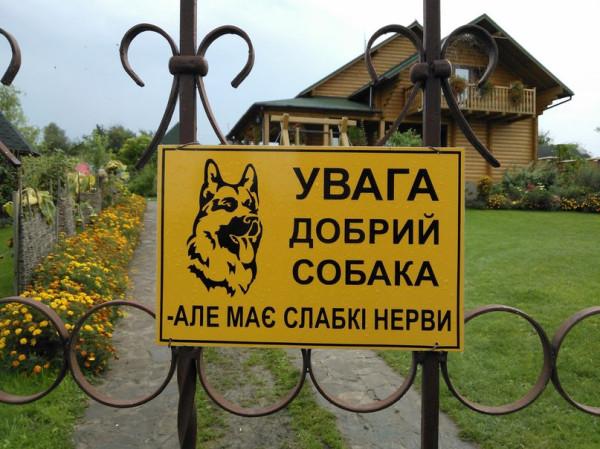 добрий-собака