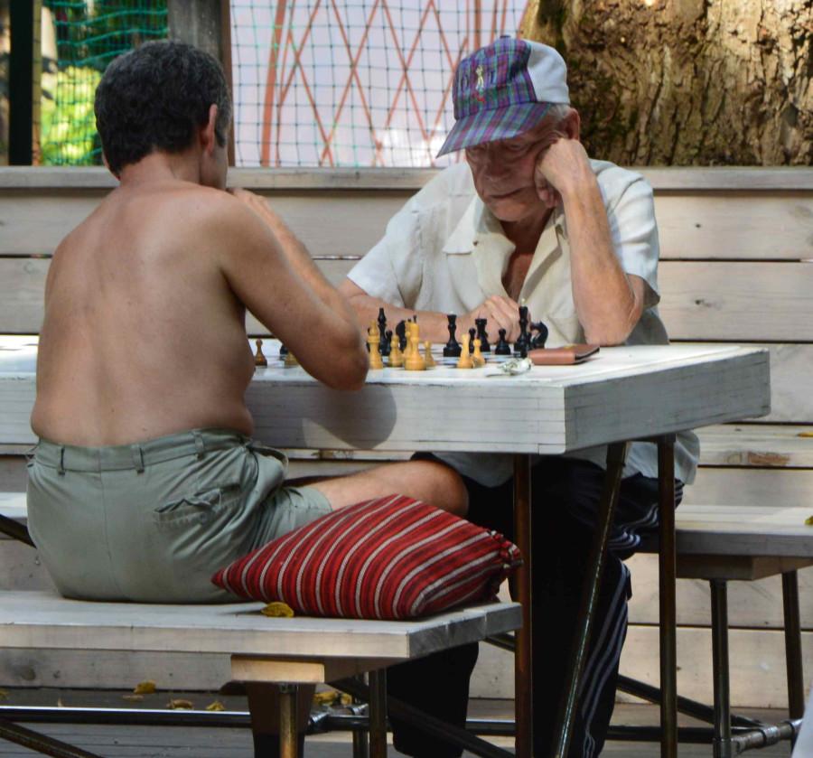 Московские пары Шахматисты