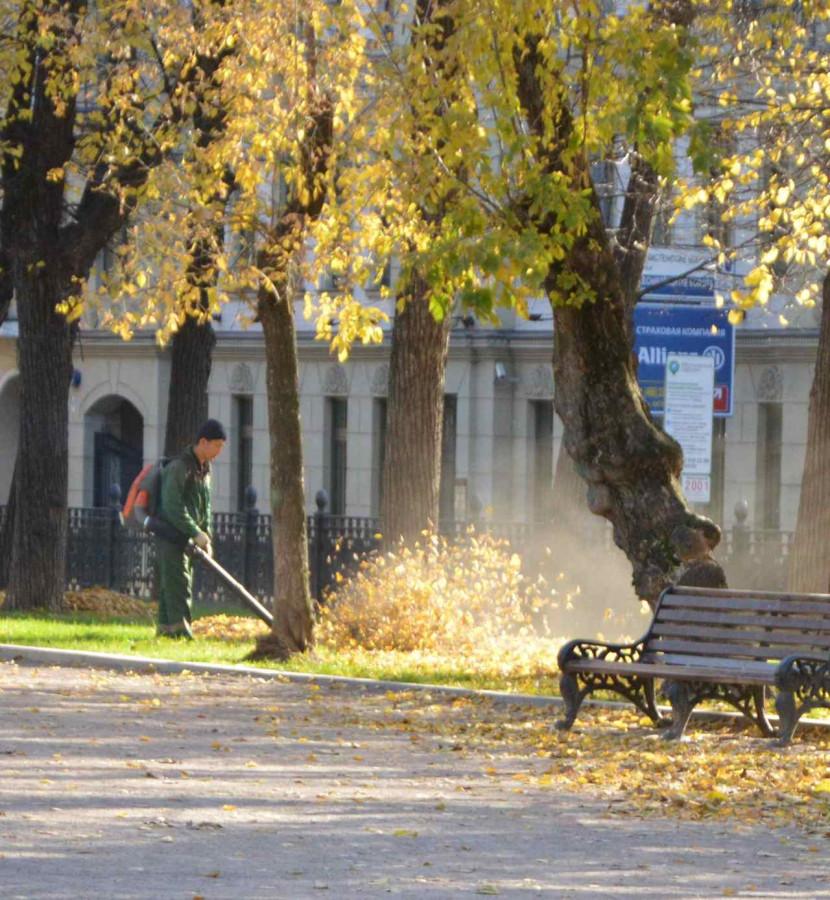 Золотая моя Москва31