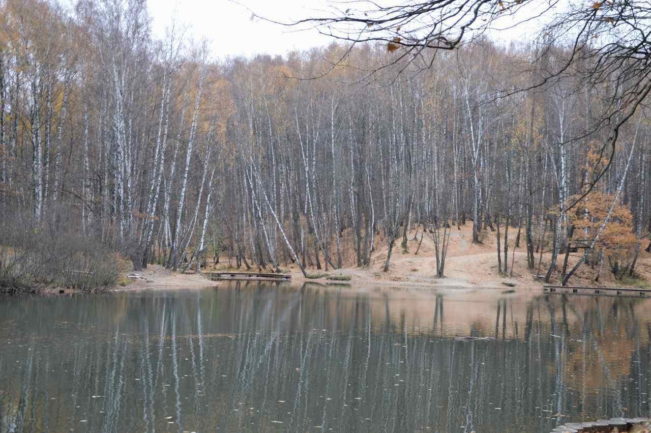 Тропарево осень2014_2