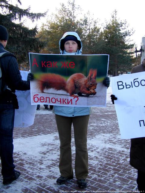 19.11.2011, митинг «Челябинцы — За перемены!», девушка с плакатом «А как же белочки?»