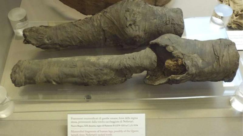 Гривну повесили на шею, прежде чем принести животное в жертву