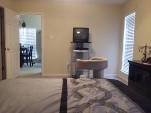 Master Bedroom - Before 5