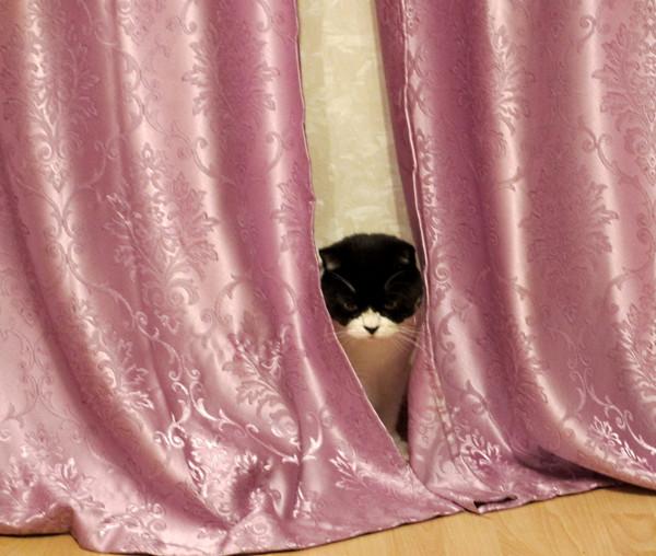 Иногда мы прячемся здесь!