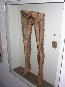 Штаны из человеческой кожи.