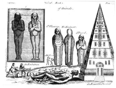 Mummies and Embalming, from an English translation of -A Compleat History of Drugs- (1725, by Pierre Pomet, physician to Louis XIV).jpg