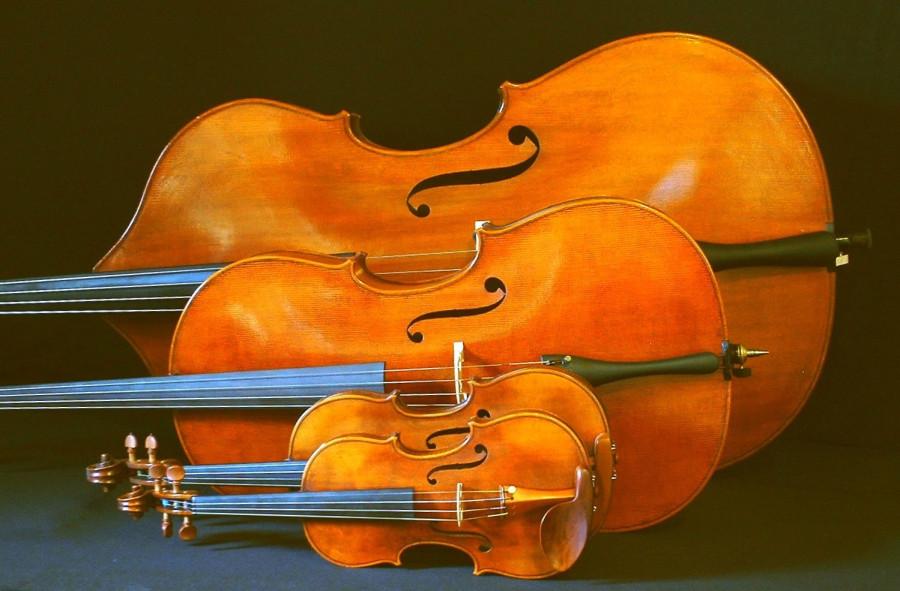 Cello_Bass.jpg