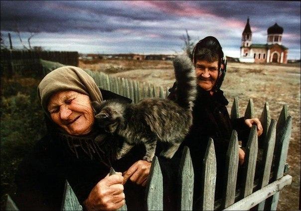 Бабушки, котенок