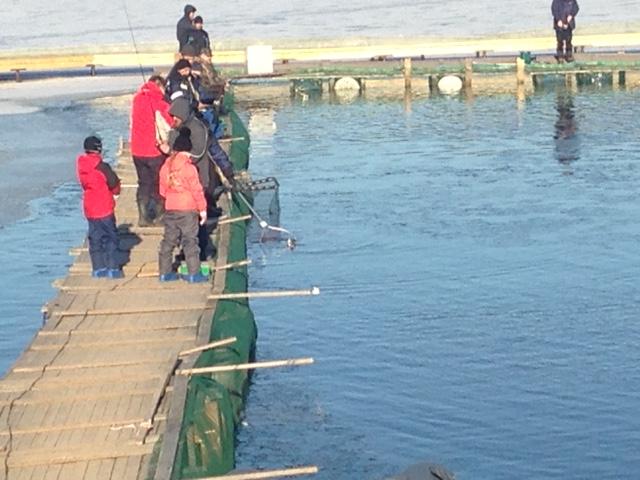 бронницы все для рыбалки