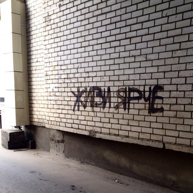 стеныговорят