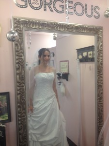 Dress Picture