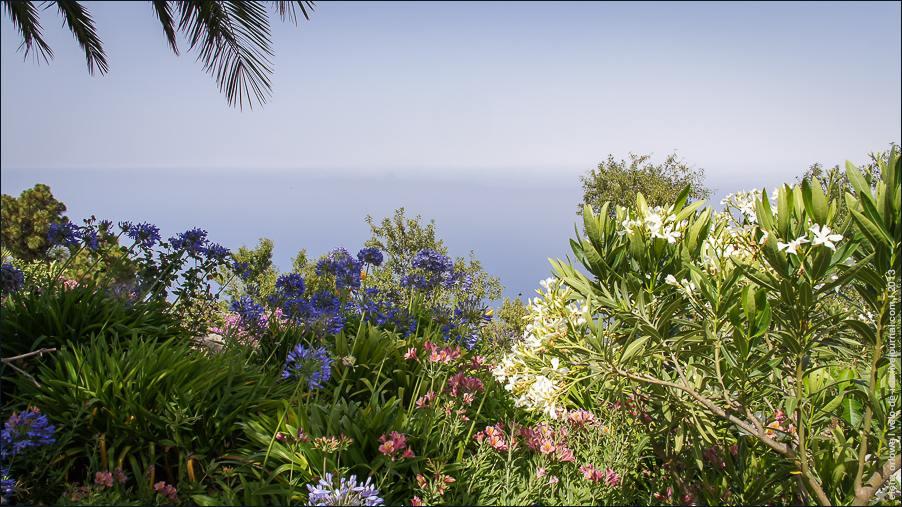 садовое-04590