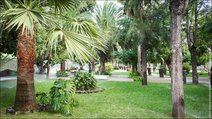 2_Centro_Botánico1-06460