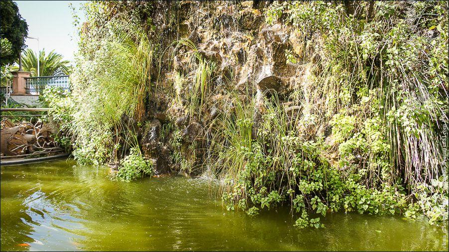 32_Centro_Botánico-06483