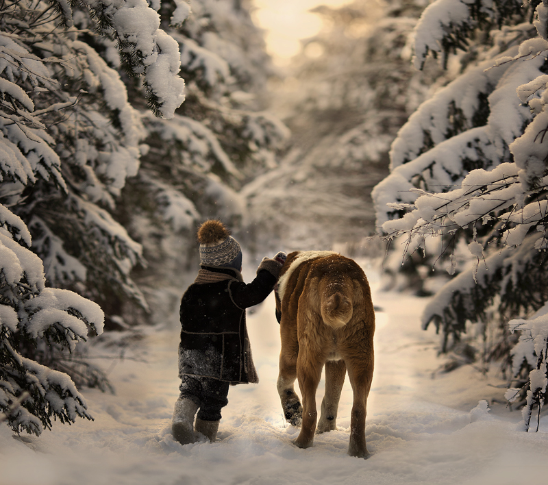 elena_shumilova_throgh_the_snows