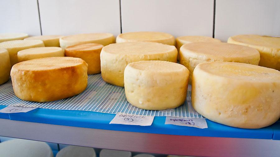 31.queso_doris-07207