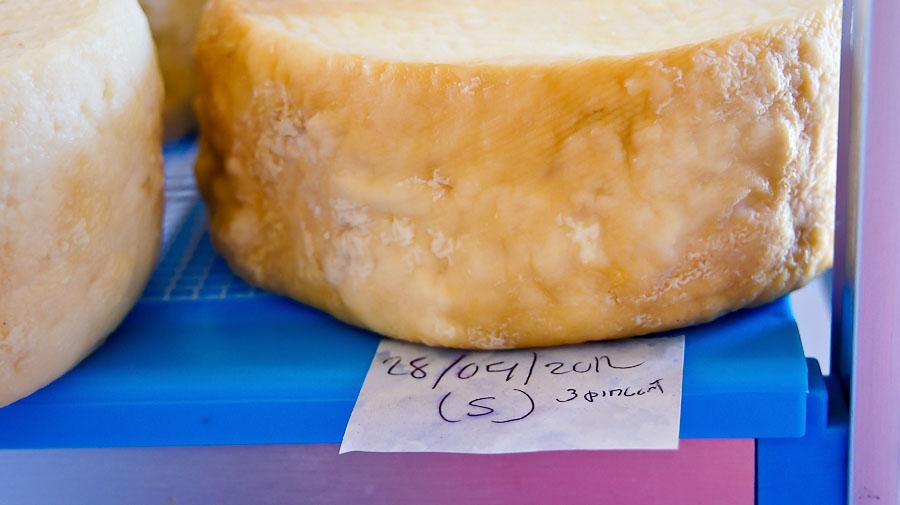 32.queso_doris-07205