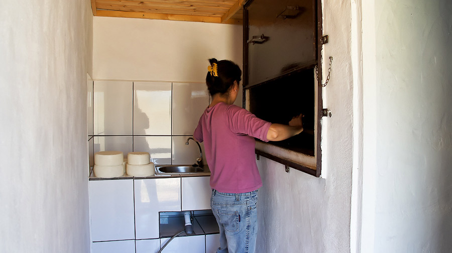 68.queso_doris-07256