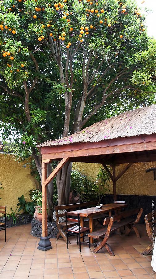 10.restorante_pinar-07425
