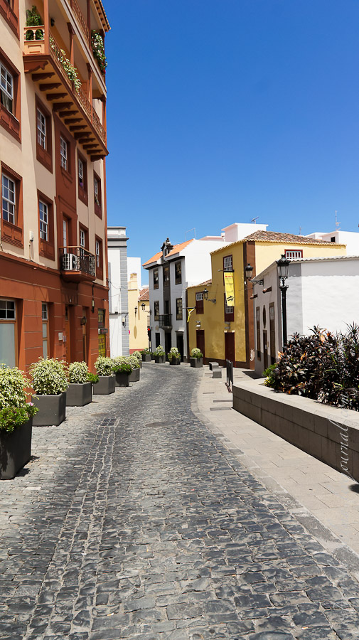 Santa_Cruz-08516